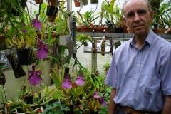 Miltonia spectabilis var. Moreliana